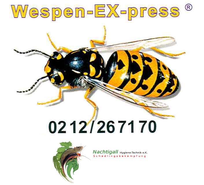 Wespen-EX-press